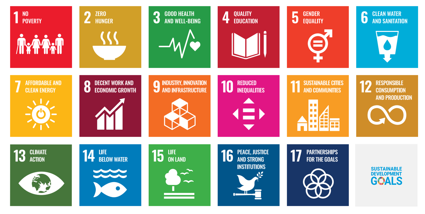 United Nations 17 Sustainable Development Goals graph